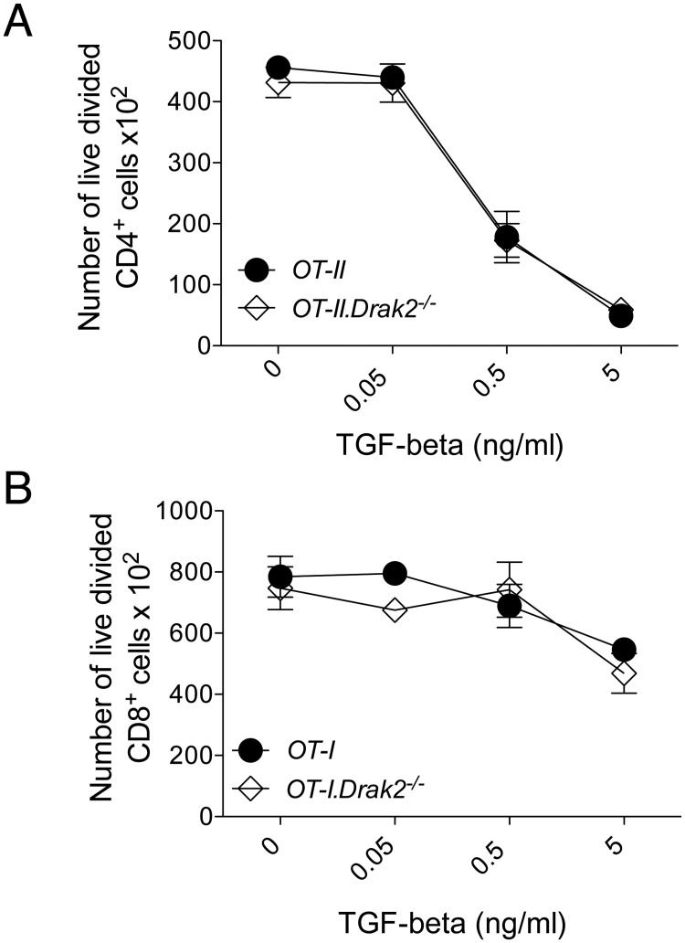 TGF-β-mediated inhibition of naïve T cell proliferation is comparable between wildtype and Drak2-/- T cells. A) <t>CD4</t> + CD25 - CD44 lo naïve cells were purified from OT-II and OT-II . Drak2-/- mice and stimulated with irradiated splenocytes loaded with 10μM OVA 323 peptide in the presence or absence of 10-fold TGF-β titrations for three days. The number of live, divided Foxp3 - CD4 + cells are shown for each titration. Cells were obtained from one OT-II or OT-II . Drak2-/- mouse and tested in quadruplicate. Data are representative of five separate experiments. B) CD8 + CD25 - CD44 lo CD62L hi naïve cells were purified from OT-I and OT-I . Drak2-/- mice and stimulated with splenocytes loaded with 100pM OVA 257 peptide in the presence or absence of 10-fold TGF-β titrations. Two days later, cells were harvested and analyzed by flow cytometry. The number of live, divided CD8 + cells are shown for each titration. Cells were obtained from one OT-I or OT-I . Drak2-/- mouse and tested in quadruplicate. Data are representative of three separate experiments. There was no significant difference in the response of the wildtype and Drak2-/- cells according to the Mann-Whitney U -test.