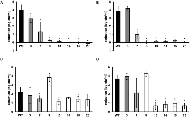 Stress resistance of late-exponential phase cells of L. monocytogenes LO28 WT and acid resistant variants in <t>BHI</t> broth . Late-exponential phase cells were exposed to pH 2.5 for 3.5 min at 37∘C (adapted from Metselaar et al., 2013 ) (A), 55∘C for 6 min (B), 420 mM hydrogen peroxide for 9 min at <t>30∘C</t> (C), and 20 mg/L benzalkonium chloride (BAC) for 5 min at 30∘C (D) . Results are expressed as reduction in log 10 cfu/ml after exposure compared to log 10 cfu/ml at t = 0. Errors bars represent the SD and significant differences from the WT are indicated with ∗( p