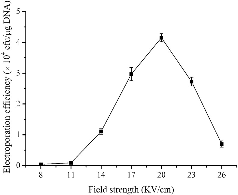 Effects of the field strength on the electroporation efficiency of B. subtilis ZK. B. subtilis ZK was grown in LBSP medium and the electro-competent cells were prepared when the OD 600 value reached 0.85. The electroporation experiments were performed under a gradient of the field strength (8–26 kV·cm −1 ). One hundred nanograms of pHT43 plasmid were used for each electroporation experiment, and the electroporation buffer was TSM. The data shown are the averages of three independent experiments, and the error bars indicate the standard deviations from the average values.