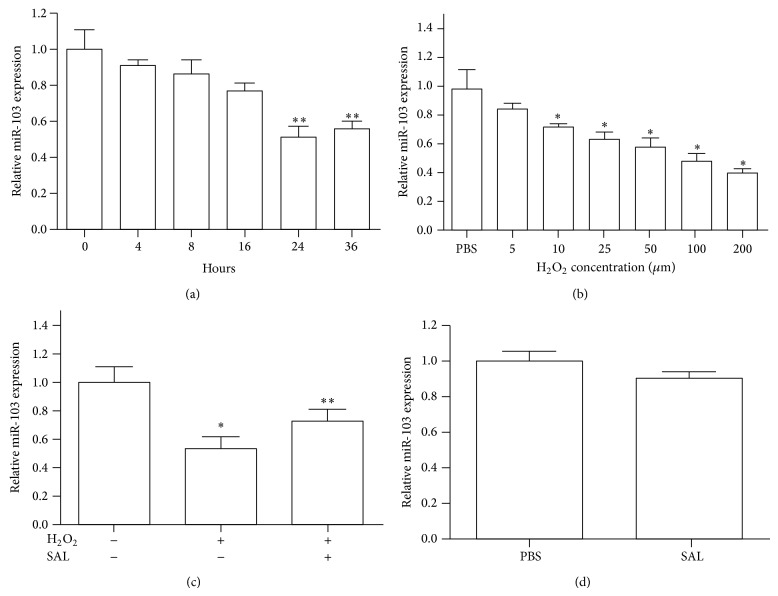 Salidroside mediated the expression of miR-103 in HUVECs induced by H 2 O 2 . (a) The expression of miR-103 was detected by qRT-PCR after H 2 O 2 treatment at the indicated time points. (b) The expression of miR-103 was determined in HUVECs treated with the indicated concentration of H 2 O 2 for 6 h. (c) HUVECs were treated with H 2 O 2 alone or in combination with salidroside. The relative expression of miR-103 was detected by qRT-PCR. (d) qRT-PCR was used to assess the relative expression of miR-103 in HUVECs treated with or without salidroside. Data are shown as the mean ± SD from three independent experiments. ∗ p