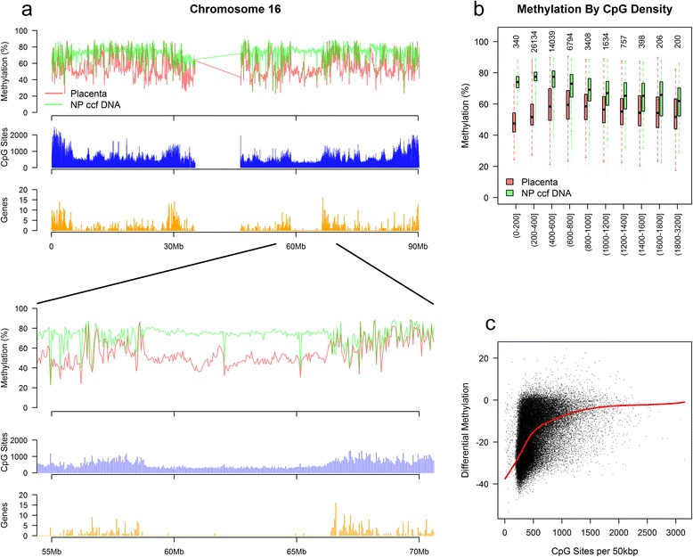 Identification of placenta hypomethylated domains (PHDs). (a) Mean methylation per 50 kbp genomic bin on chromosome 16 with non-pregnant ccf DNA (NP ccf DNA) and placenta shown. CpG sites (blue) and genes (orange) were summed per 50kbp genomic bin. (b) Genomic methylation level by CpG density at 50 kbp bin level. Values on the x-axis represent the number of CpG sites per 50 kbp bin. Numbers along the top indicate the number of genomic bins analyzed. (c) Differential methylation between placenta and non-pregnant plasma as a function of CpG density at 50 kbp bin level. A negative value on the y-axis is indicative of placenta hypomethylation. The red line corresponds to a loess smoothed fit.