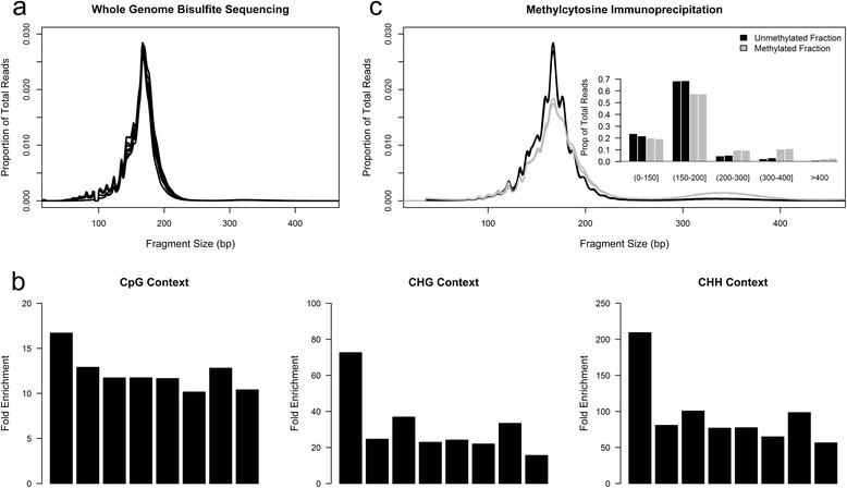 Linkage between fragment size and local DNA methylation in non-pregnant ccf DNA. (a) Fragment size of ccf DNA as measured by WGBS. Each line represents an individual ccf sample. Loss of representation at approximately 92 to 98 bp is an artifact of adapter trimming prior to alignment. (b) Ratio of methylated CpG, CHG, and CHH cytosines within large fragments ( > 200 bp) relative to methylated cytosines in small fragments (