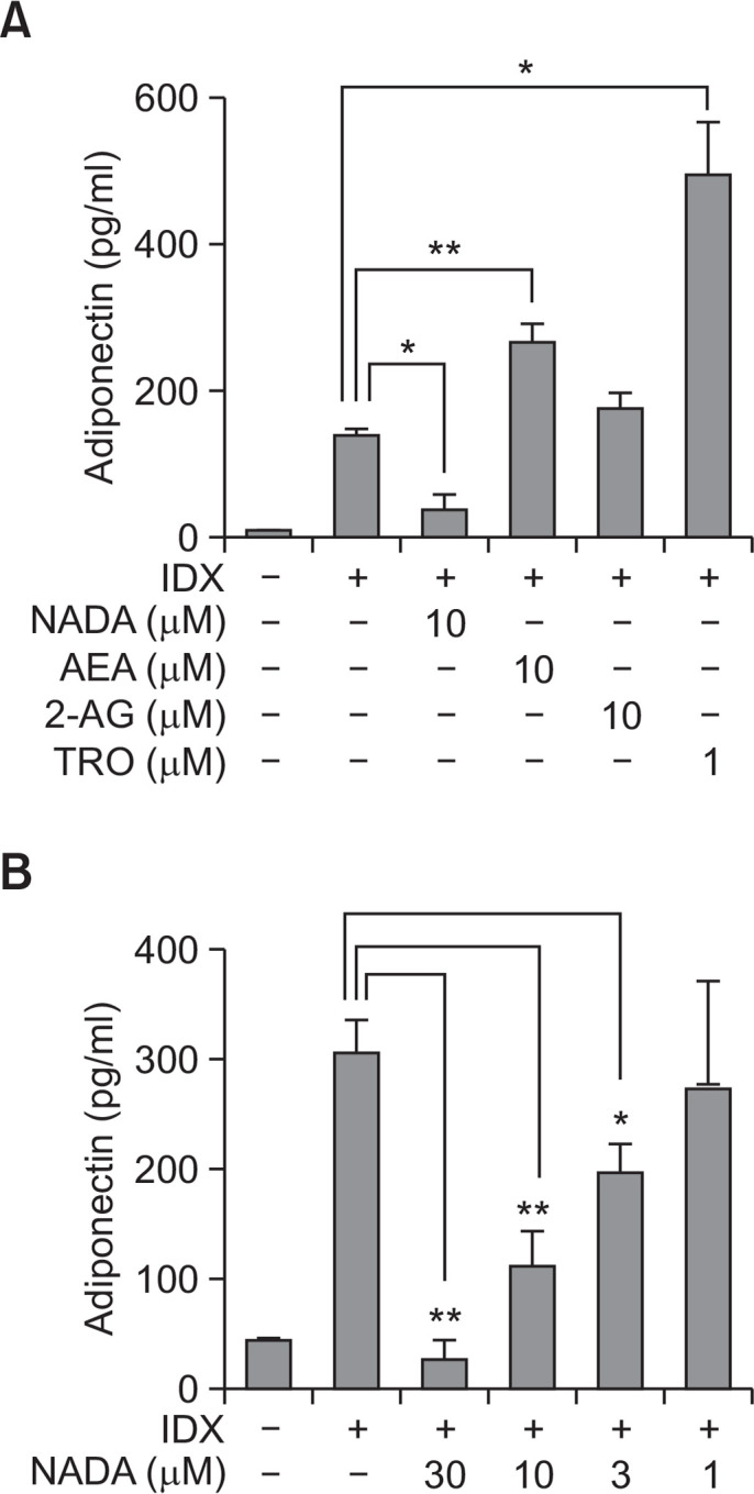 Effects of endocannabinoids on adiponectin production during adipogenesis in hBM-MSCs. When hBM-MSCs were in confluent state, adipogenesis was induced by exchanging media with the IDX adipogenic cocktail. ELISA was performed to measure the concentration of adiponectin (A) accumulated in cell culture supernatants for 48 hours after the last medium exchange. The concentration-dependent effect of arachidonyl dopamine (NADA) on the inhibition of adipogenesis was evaluated (B). Values represent the mean expression ± standard deviation (SD) (n=3). * p ≤0.05 and ** p ≤0.01.