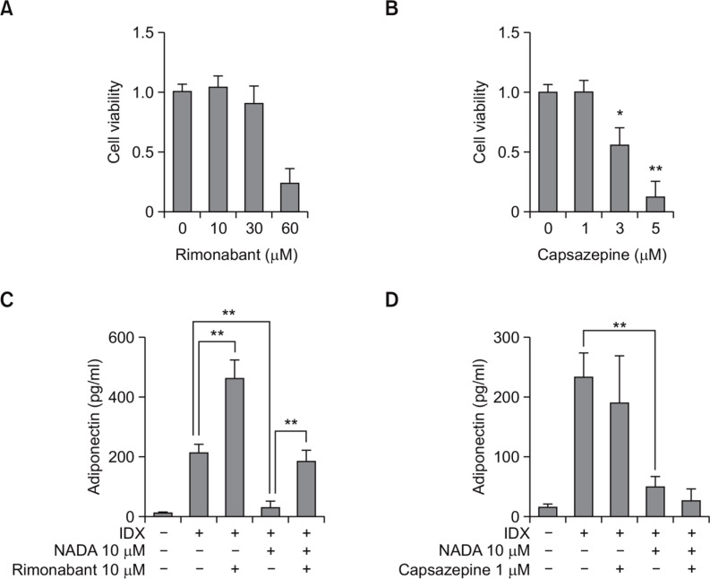 Effects of rimonabant and capsazepine on the NADA-dependent inhibition of adipogenesis in hBM-MSCs. hBM-MSCs were cultured in 24 well plates. When confluent, the cell viability effects were evaluated for rimonabant (A) and capsazepine (B), both of which were treated for 72 hours in hBM-MSC culture. The cell viability was determined by WST-1 assay. For testing the effects of capsazepine (C) and rimonabant (D) on the NADA-induced inhibition on the adipogenesis in hBM-MSCs, cell culture supernatants were harvested for the measurement of adiponectin by ELISA at the 7 th days after exchanging media containing with IDX. Values represent the mean expression ± standard deviation (SD) (n=3). * p ≤0.05 and ** p ≤0.01.