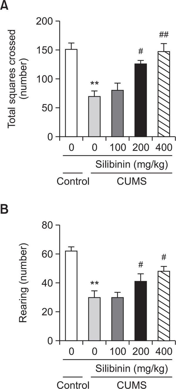 Effects of silibinin on CUMS-induced depression-like behavior in the open field test. (A) The total number of squares crossed. (B) The frequency of rearing. All values are expressed as the mean ± SEM ( n =12 each), ** p