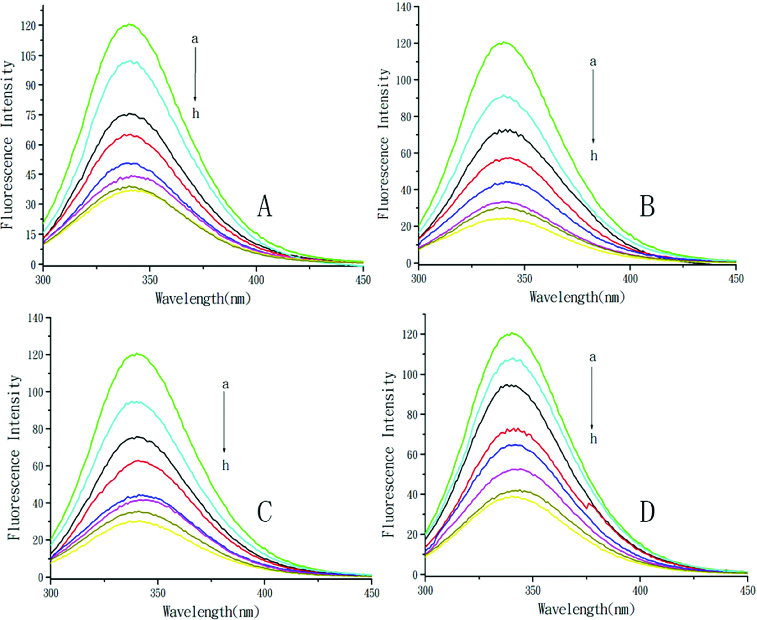 Quenching effect of DMY and its complexes on BSA fluorescence intensity. Different concentrations of DMY (A), DMY–Cu (II) (B), DMY–Mn (II) (C) and DMY-Zn (II) (D): a–h: 0.0 × 10 −5 mol L −1 (a), 1.0 × 10 −5 mol L −1 (b), 2.0 × 10 −5 mol L −1 (c), 3.0 × 10 −5 mol L −1 (d), 4.0 × 10 −5 mol L −1 (e), 5.0 × 10 −5 mol L −1 (f), 6.0 × 10 −5 mol L −1 (g), 7.0 × 10 −5 mol L −1 (h); λ ex = 280 nm; T = 300 K.