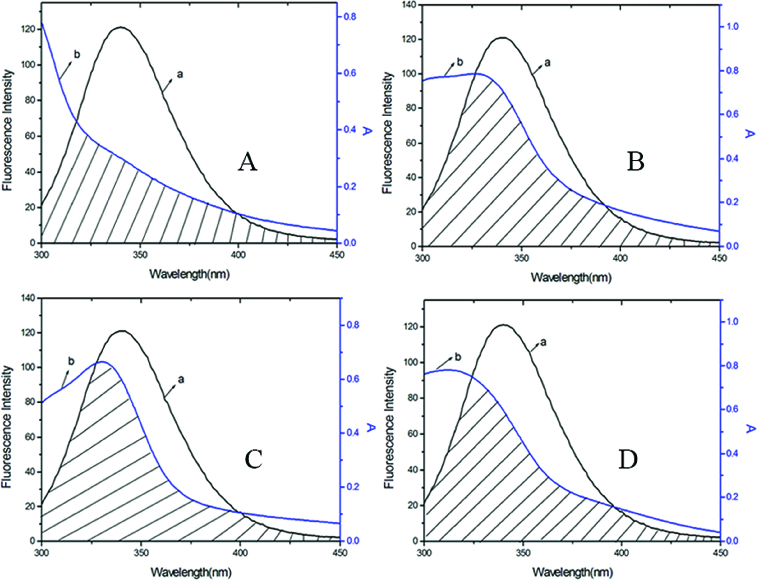 Overlap of the fluorescence emission spectrum of BSA (a) and the UV–vis absorption spectra (b) of DMY (A), DMY-Cu (II) (B), DMY-Mn (II) (C) and DMY-Zn (II) (D). C BSA = 1.00 × 10 −6 mol L −1 , C DMY = C DMY-Cu (II) = C DMY-Mn (II) = C DMY-Zn(II) = 3.0 × 10 −5 mol L −1 .