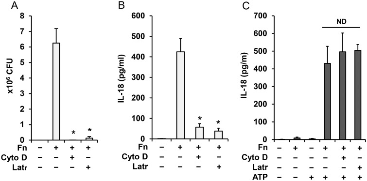 Inflammasome priming by Francisella is independent of bacteria internalization. Human monocytes were pretreated for 30 min with latrunculin A (Latr) (200 nM) and cytochalasin D (Cyto D) (5 μg/ml) and infected with F . novicida for 16 h. CFU of internalized bacteria ( A ) and IL-18 release ( B ) were counted. Monocytes treated with latrunculin and cytochalasin D as in A, B and then primed with Francisella for 30 min followed by ATP (5mM) for 30 min were analyzed for IL-18 in cell culture media by ELISA ( C ). Data represent mean ± SEM, n = 3 independent experiments. * p