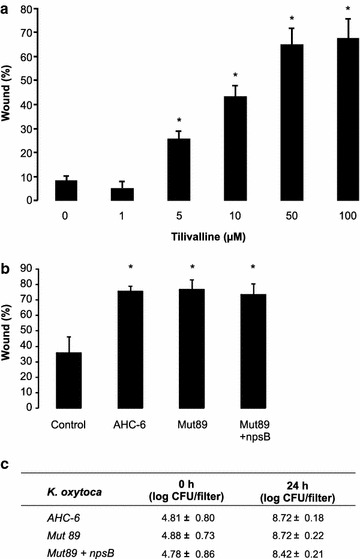 a Wound healing capacity of TR146 cells treated with different concentrations of tilivalline (mean + SD; *p