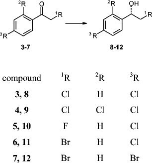 Halogen derivatives of acetophenone ( 1 ): 2,4′-dichloroacetophenone ( 3 ), 2,2′,4′-trichloroacetophenone ( 4 ), 2-chloro-4′-fluoroacetophenone ( 5 ), <t>2-bromo-4′-chloroacetophenone</t> ( 6 ) and 2,4′-dibromoacetophenone ( 7 ). ( 2 ), ( 8 – 12 ) Racemic alcohols