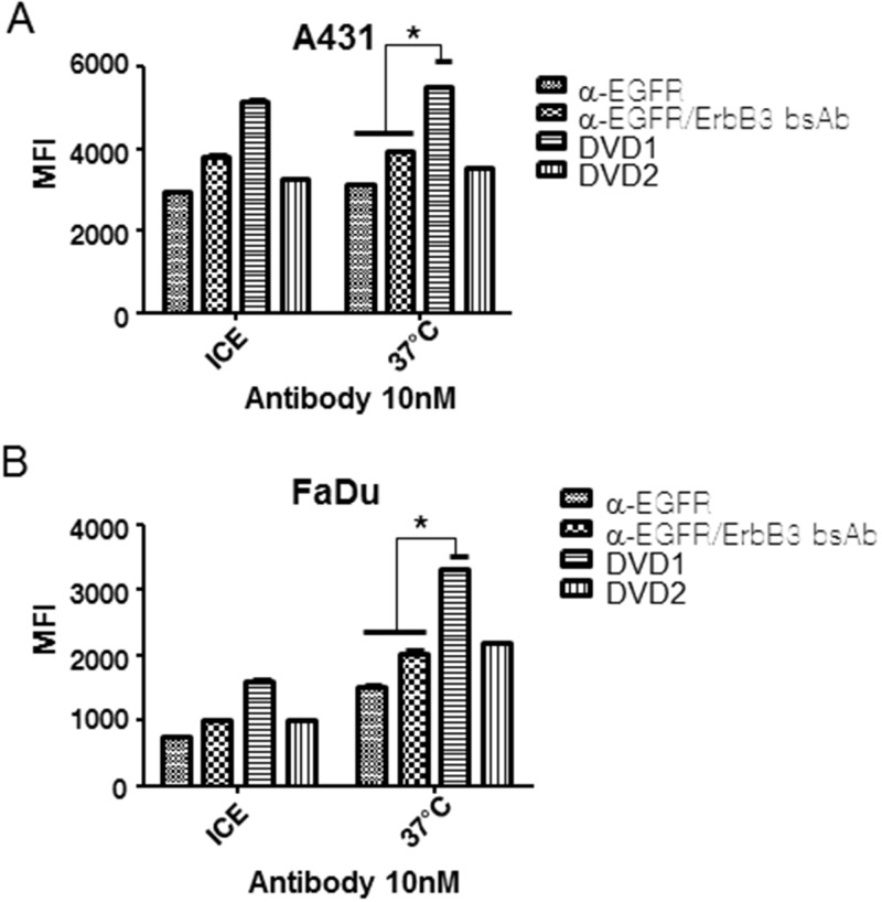 Anti- EGFR/ErbB3 DVD-Ig protein internalization. (A) A431 and (B) FaDu cells were treated with 10nM pHRodo-labeled anti-EGFR mAb alone, the bsAb, or anti-EGFR/ErbB3 DVD-Ig proteins on ice or at 37°C for 2 hours in PBS. Fluorescence intensity was measured via FACS. The error bars indicate standard deviation from the mean. p value was calculated via student T-test. *p