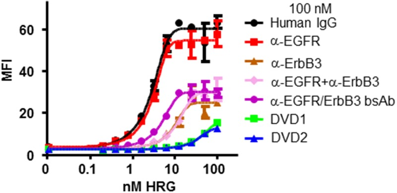 DVD-Ig proteins inhibit HRG binding to FaDu cells. Serial dilutions of HRG were incubated with 100 nM anti-EGFR and anti-ErbB3 mAbs alone, anti-EGFR and anti-ErbB3 mAbs in combination, the bsAb, or anti-EGFR/ErbB3 DVD-Ig proteins. HRG binding affinity to FaDu cells was measured via FACS. MFI: median fluorescence intensity. The error bars indicate standard deviation from the mean.