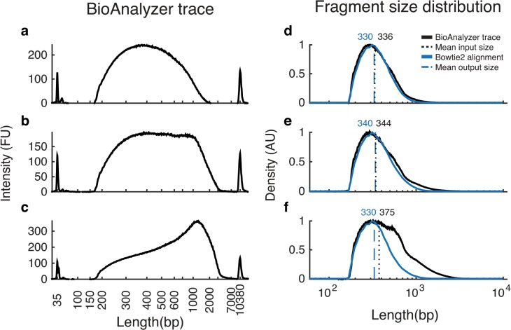 Correspondence between BioAnalyzer traces and the length distribution of aligned reads. Panels A-C show three representative BioAnalyzer traces from three sample preparations of S . maltophilia . Panels D-F show the corresponding estimated fragment-size distributions (black) and the actual distributions of fragment lengths imputed from alignment to the reference genome (blue). A BioAnalyzer trace f(x) shows fluorescence f at fragment length x . However, we are interested in n(x) , the (relative) number of fragments n of length x . Since fluorescence of a DNA fragment is proportional to its length, n(x) ∝ f(x) / x . Note that sequencing can be successful despite the presence of apparently very long fragments (which are likely heteroduplexes) in the BioAnalyzer traces (Panels C and F).