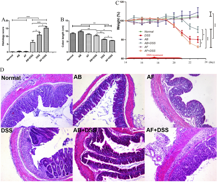 Fluconazole (anti-fungal, AF) treatment exacerbates acute DSS-colitis in mice. Six groups of mice were treated as shown in Table 2. (A) Histology scores and (B) colon lengths were measured on day 23 after sacrifice. (C) Weights were measured on days 14–23, and the percent weight change was calculated. The values are expressed as mean ± SEM. (D) Hematoxylin and eosin staining of representative cross-sections of murine distal colon (HE, ×200). Colons of normal, antibiotic cocktail (AB), and AF mice have normal appearances. AB + DSS mice exhibit slight inflammation with a low level of lymphocyte infiltration. DSS mice display mucosal and submucosal inflammation, bowel wall thickening, and a moderate level of lymphocyte infiltration and regeneration with crypt depletion. AF + DSS mice show transmural inflammation, extensive lymphocyte infiltration, and loss of the entire crypt and epithelium. (n = 8–12/group). * P