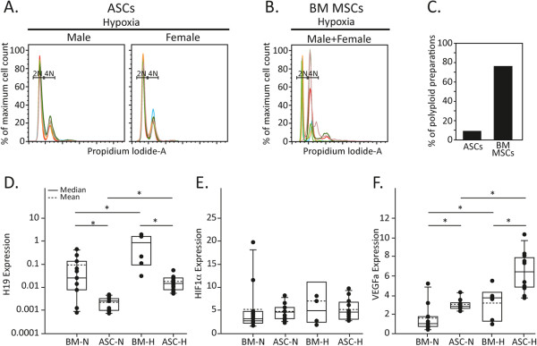 Independent adipose-derived mesenchymal stem cell preparations retain their diploid state under hypoxia and react homogeneously to changing oxygen conditions. Independent preparations of paired (A) adipose-derived mesenchymal stem cells (ASCs) and (B) bone marrow mesenchymal stem cells (BM MSCs; prepared from the same male or female mouse) were expanded in Mesencult under hypoxic conditions (3% oxygen) and their DNA content was analyzed by flow cytometry. Resulting plots from male/female adipose-derived mesenchymal stem cells/BM MSCs were overlaid and are presented in a single graph, diploid (2N) and tetraploid (4N); six female and six male adipose-derived mesenchymal stem cells and six total female and male BM MSCs were used. (C) Graph summarizing the percentage of adipose-derived mesenchymal stem cells and BM MSCs that became polyploid out of all cell preparations cultured during the study. (D) , (E) (F) Comparison of the RNA level of independently derived adipose-derived mesenchymal stem cells or BM MSCs that were expanded either in hypoxic (H) or normoxic (N; normal oxygen) conditions made by quantitative real-time PCR. * P