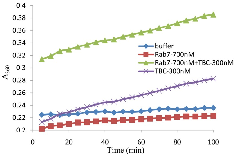 The release of inorganic phosphate (Pi) by GTP hydrolysis through an interaction between TBC1D15 and Rab7a-WT. The TBC1D15 protein shows Rab-GAP activity for Rab. GTP was used as the substrate for Rab. The blank control (buffer) was the only sample without any protein. The release of Pi was detected using a spectrophotometer at 360 nm (A 360 ) every 5 min.