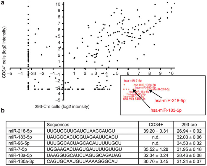 miRNA expression profiling in 293-Cre versus CD34+ cells. ( a ) MicroRNA log2 intensity scatterplots of CD34+ cells (Y-axis) and 293-Cre cells (X-axis). miRNAs that fulfill our selection criteria (high expression level in 293-Cre cells and absent/low expression in CD34+ cells are labeled in red. 293-Cre and CD34+ cells (pooled from four different donors) were infected with Ad vectors as described in the text. Twenty-four hours after infection, total RNA was isolated and hybridized to an array chip containing > 2,000 miRNA probes. ( b ) Confirmation of array results by real-time PCR analysis for selected miRNA using the same RNA samples used for the array study. The C t value was presented as average and SD from quadruplicate experiments. hsa-miR-130a-3p was selected as a positive control because, based on miRNA array and qRT-PCR assays, it was expressed at high levels in all 293 and CD34+ cell samples. The C t value correlates inversely with the RNA concentration. n.d., not detectable.