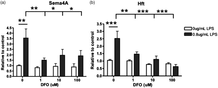 Microglial expression of Sema4A protein was decreased after DFO induced iron deficiency while activated by LPS. Primary rat microglia cells were treated with increasing DFO or with 0.8 µg/mL LPS and increasing concentrations of DFO for 24 hr. (a) Sema4A is significantly increased after LPS alone. With the addition of LPS/DFO, there is a significant decrease in Sema4A expression. (b) Hft expression is significantly increased after LPS alone. With the addition of LPS/DFO, Hft expression is significantly decreased. Protein quantification is relative to beta-actin loading control. Two-way analysis of variance with Bonferroni post hoc test was used to determine significance. Values represent average ± SEM . DFO = deferoxamine; LPS = lipopolysaccharide; Hft = H-ferritin. * p