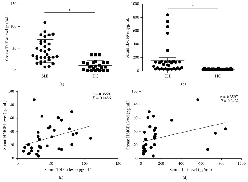 The HMGB1 levels were associated with proinflammatory cytokines in SLE patients. (a-b) TNF- α (a) and IL-6 (b) concentrations in sera from SLE patients and HC were detected by ELISA. The scatter-plot represented the TNF- α and IL-6 levels by ELISA analysis. Each symbol represents one SLE patient. Horizontal lines represent the median. Data represent the average from experiments performed in triplicates for each patient. (c-d) Correlation analyses were presented between HMGB1 and TNF- α levels (c), HMGB1 and IL-6 levels (d). Pearson correlation analysis was used in the correlation analysis. ∗ P