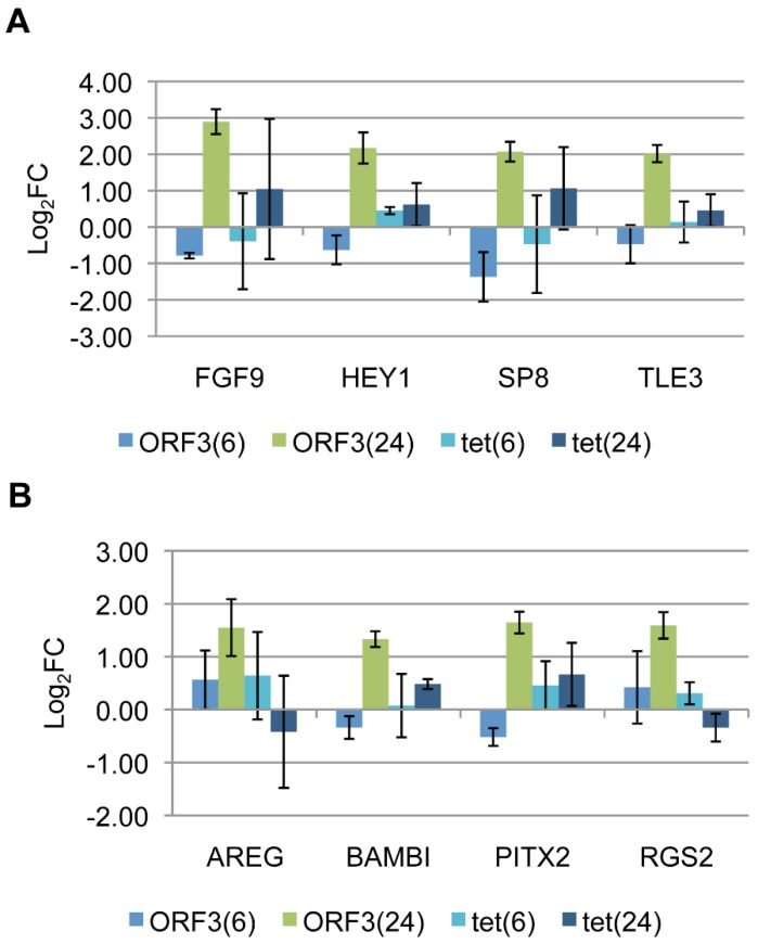 Validation of select E4-ORF3 targets from ( A ) cluster 1 or ( B ) cluster 2 by RT-qPCR with relative quantification. Bars represent Log 2 fold expression change in dox-treated Tet-E4-ORF3 or U2OS-Tet cells relative to mock treated Tet-E4-ORF3 or U2OS-Tet cells, normalized to GAPDH at 6 and 24 hours post-induction. Error bars = S.D., n = 3.