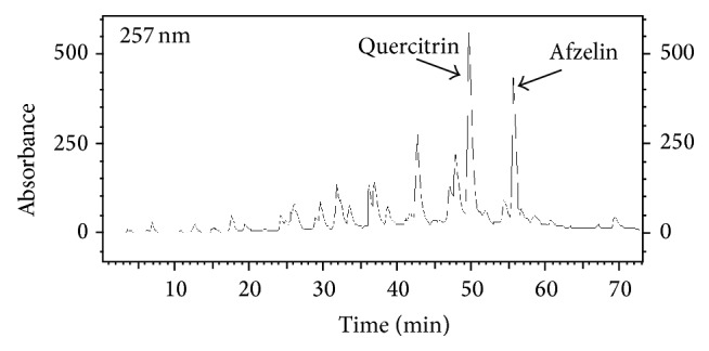 Chromatogram obtained in <t>HPLC-UV-DAD</t> of Cop with wavelength of 257 nm. C 18 column (4.6 × 250 mm, 5 mM), mobile phase: (A) water and 0.01% trifluoroacetic acid and (B) MeOH, gradient elution: 15–50% of B in 45 min, 50–90% of B by 65 min, and 90–15% of B by 70 minutes followed by 2 minutes of 15% B; flow rate: 1 mL/min.