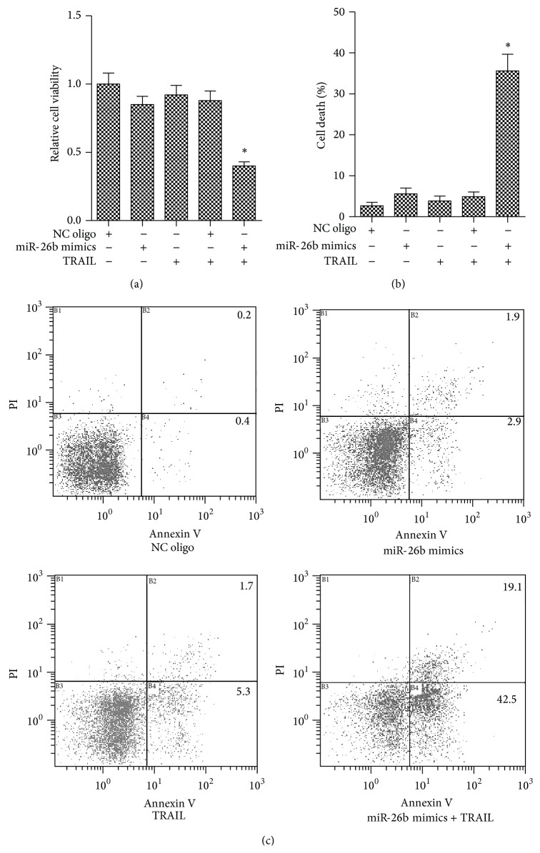 miR-26b sensitized TRAIL-induced cell viability inhibition and apoptosis in HepG2 cells. Three independent experiments were performed. (a) HepG2 cells were transfected with indicated RNA oligos with/without TRAIL. Then the MTT assay was performed for evaluating the cell viability. ∗ P