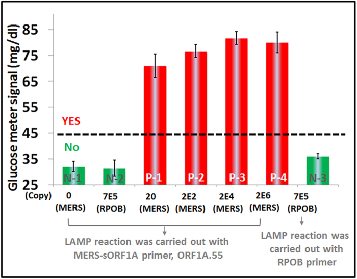 Sensitive and specific detection of synthetic MERS-CoV DNA (sORF1A) using LAMP-to-glucose transduction. The bar-graph presents glucometer responses to both non-target (RPOB) and different amounts of target (MERS-CoV sORF1A = MERS) templates. N-1, N-2, P-1 to P-4 were amplification reactions with the ORF1A.55 MERS-CoV primer set. Cognate targets (P) respond while non-cognate targets or negative controls (N) do not. Assays included a 1.5 hour 55 o C LAMP reaction, 1 hour 25 o C OSD, and 40 min 55 o C glucose generation using a commercial yeast invertase (yeast INV). The error bars represent standard deviations calculated from three parallel assays.