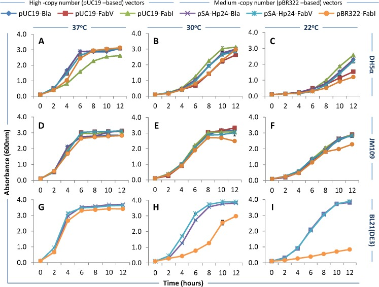 Bacterial growth characteristics. E . coli DH5α, JM109, and BL21(DE3) were transformed with FabV (pUC19-FabV and pSA-HP24-FabV), FabI (pUC19-FabI, pBR322-FabI), or Bla (pUC19–Bla, pSA-HP24-Bla)-plasmids, and the transformants were selected on LB agar plates. Seed cultures were used to inoculate 25mL LB broth in 250mL baffled flasks and cultures grown at 37, 30, and 22°C for up to 12 hours while shaking at 250rpm. Samples were collected at one hour interval and growth was measured by absorbing the diluted samples at 600nm and graphs plotted. Error bars show standard deviations calculated from at-least six (6) independent experiments performed in triplicate.
