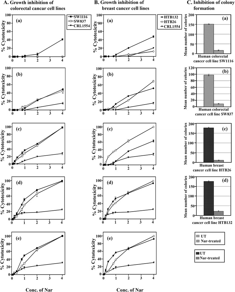 Time and dose-dependent anti-proliferative effects and inhibition of colony formation of Nar on human colorectal and breast cancer cell lines. Human colorectal cancer cells (SW1116, SW837) (A a- e) , human breast cancer cells (HTB 26, HTB132) (B a- e) and normal human fibroblast cells (CRL1554) (A, B a- e) were plated (27 × 10 3 cells/well) in 96-well plates in CO 2 and non-CO 2 incubators, depending on type of media and cells, at 37°C for 18 h. The cells were then treated with various concentrations of Nar (0.05 – 4.0 mM) for 3–24 h. Cell growth was monitored using an MTT assay. Untreated and Nar-treated colorectal cancer cells SW1116 (Ca) , SW837 (Cb) and Nar-treated breast cancer cells HTB26 (Cc) , HTB132 (Cd) were trypsinized, counted and plated (500 cells /well) in 6-well plates. Following 10–14 days of incubation in non-CO 2 incubator at 37°C, the colonies were fixed and stained with crystal violet. The stained colonies were counted and compared with the untreated control.