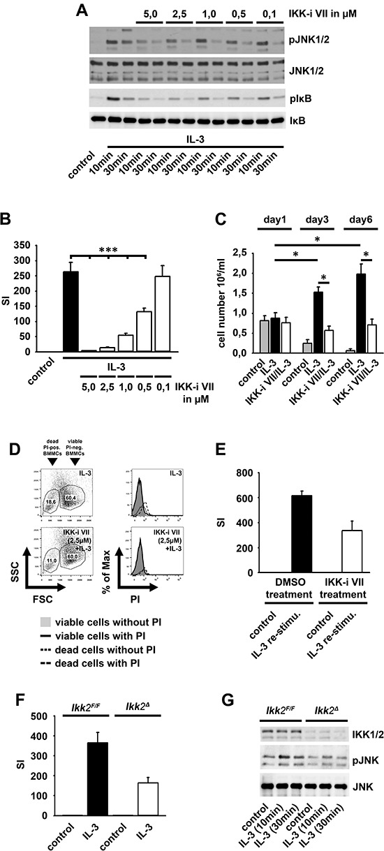 The IL-3-induced IKK2 activation mediates mitogenic signaling (A, B) BMMCs were pre-incubated with the IKK-inhibitor VII and were stimulated with IL-3. Lysates were analyzed by westernblotting (A) or cells were probed with [H 3 ]thymidine and analyzed by β -counting (B) ( p