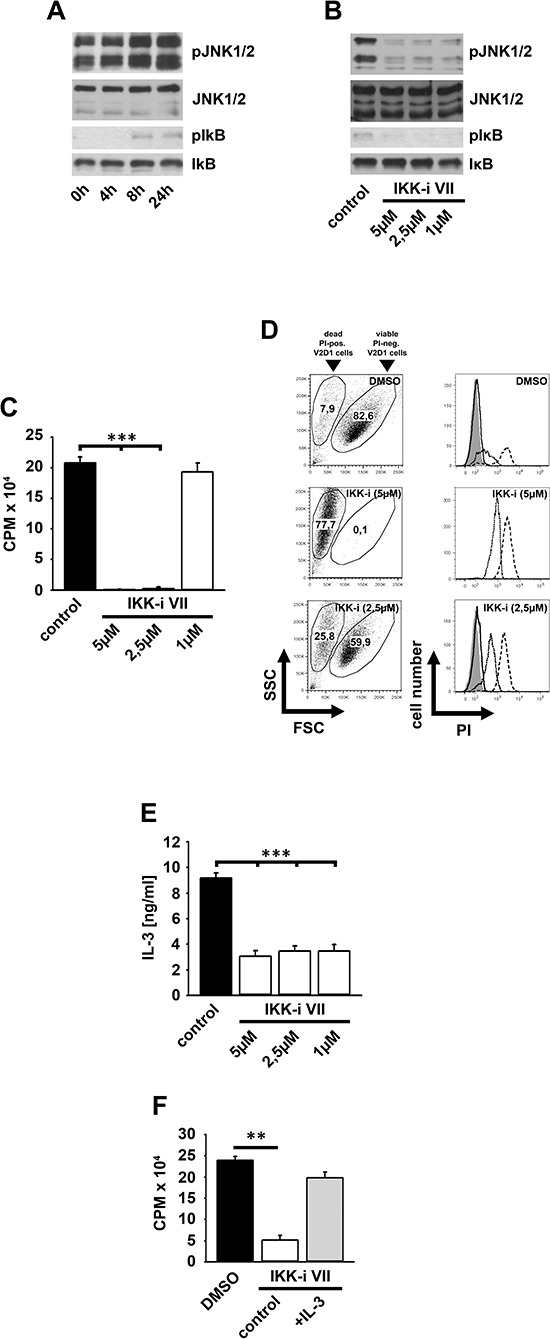 Survival of V2D1 cells depends on the IKK-mediated IL-3 production (A) V2D1 cells were cultured in IL-3-free medium for different time periods. Lysates were analyzed by westernblotting. (B–D) V2D1 cells were treated with the IKK-inhibitor VII. Lysates were analyzed by westernblotting (B) or cells were probed with [H 3 ]thymidine (C) or PI (D) . Cells were analyzed by β -counting (C) or by flow cytometry (D) ( C ; p