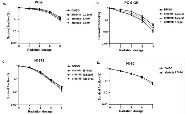 Effect of afatinib on cell clonogenic survival in irradiated lung cancer cells PC-9 (A), PC-9-GR (B), H1975 (C) and H460 (D) cells were pre-treated with afatinib for 2 hours and then irradiated with indicated doses. Clonogenic survival assays were performed as described in Materials and Methods. Data represent the average of three experiments. Error bars indicate standard deviation.