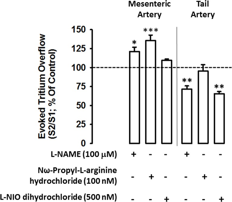 Influence of nitric oxide inhibitors on the modulation of electrically- evoked tritium overflow in tail and mesenteric arteries: interaction with nitric oxide inhibitors L-NAME (100 μM, a non-selective nNOS inhibitor), <t>Nω-Propyl-L-arginine</t> hydrochloride (100 nM, a selective nNOS inhibitor) and L-NIO dihydrochloride (500 nM, a selective eNOS inhibitor). Arteries were electrically stimulated (S 1 -S 2 : 100 pulses, 5 Hz, 1 ms, 50 mA). Drugs were added immediately after S 1 and kept until the end of the experiment. Ordinates : S 2 /S 1 values obtained in individual tissue preparations, expressed as a percentage of the appropriate S 2 /S 1 control value. Values are mean±s.e.m. from n = 4–6. Significant differences from the appropriate control: *P