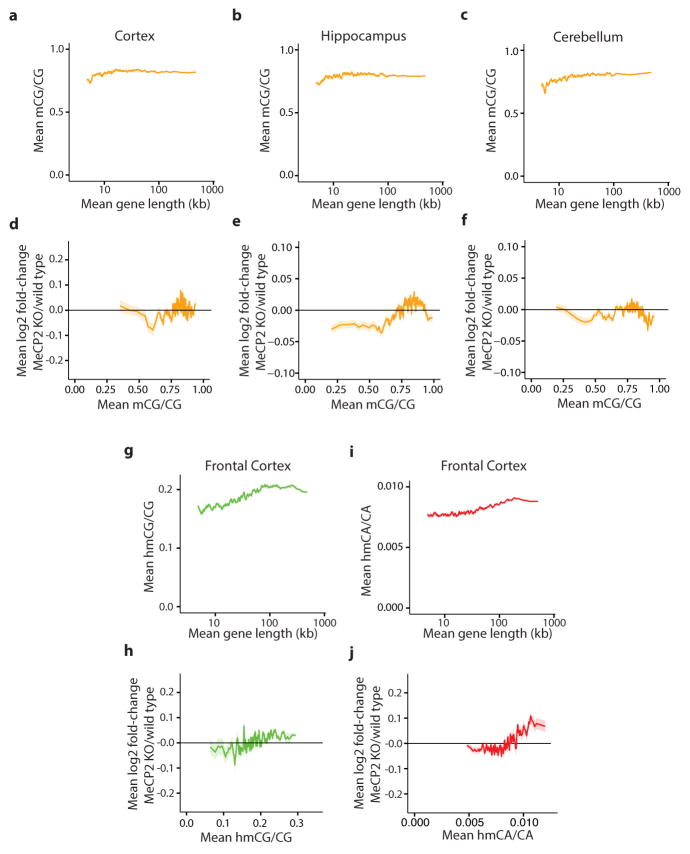 Genomic analysis of mCG, hmCG, and hmCA in length-dependent gene regulation by MeCP2 a–c, Mean methylation of CG dinucleotides (mCG/CG) within gene bodies (transcription start site +3 kb, up to transcription termination site) in the cortex ( a ), hippocampus ( b ) and cerebellum ( c ) for genes binned according to length. d–f , Mean fold-change in gene expression in MeCP2 KO compared to wild type in the cortex ( d ), hippocampus ( e ), and cerebellum ( f ) for genes binned according to mCG levels (mCG/CG) within gene bodies. g , Mean hmCG levels (hmCG/CG) within gene bodies in the frontal cortex 24 for genes binned according to length. h , Mean fold-change in gene expression in MeCP2 KO compared to wild type for genes binned according to hmCG levels (hmCG/CG) within gene bodies in the frontal cortex 24 i , Mean hmCA levels (hmCA/CA) within gene bodies in the frontal cortex 24 for genes binned according to length. j , Mean fold-change in gene expression in MeCP2 KO compared to wild type genes binned according to hmCA levels (hmCA/CA) within gene bodies in the frontal cortex 24 . In all panels, mean values for each bin are indicated as a line (200 gene bins, 40 gene step); ribbon depicts S.E.M. for genes within each bin.