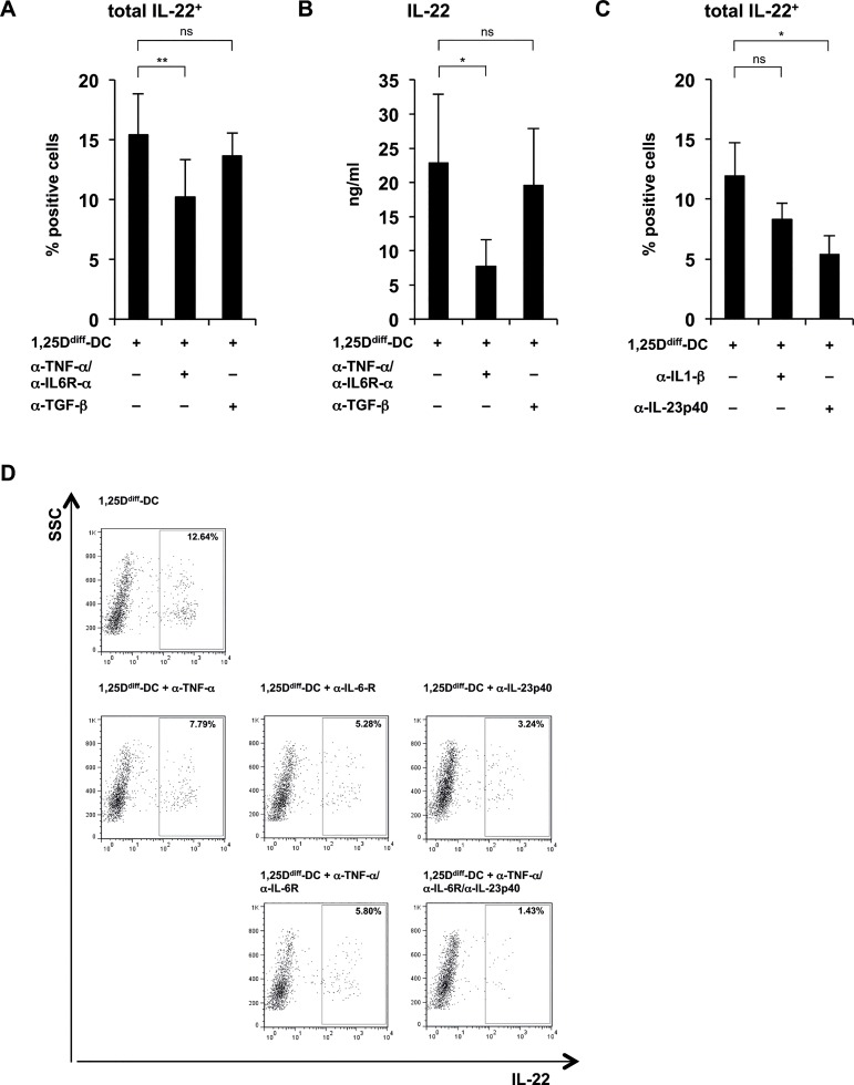 1,25D diff -DC-supernatant mediated priming of IL-22-producing T cells is dependent on TNF-α IL-6 and IL-23. Supernatants of TLR2/1-stimulated 1,25D diff -DCs were added to naïve CD4 + T cells activated via CD3/CD28-coated beads (as described in Fig 4 ) in the presence or absence of different monoclonal blocking antibodies as indicated. After five days, rIL2 was added to all cultures. On day 12, T cells were restimulated with PMA/Ionomycin for five hours, the last 2.5 hours of culture in the presence of Brefeldin A, in fresh media and intracellular cytokine expression of IL-22, IFN-γ or IL-17a was measured. Cytokine secretion was evaluated after 18–24 hours without further addition of Brefeldin A. (A) Anti-TNF-α, anti-IL-6R-α (5 μg/ml each) or anti-TGF-β (10 μg/ml). T cell-derived IL-22 assessed by ELISA (mean of cytokine levels in ng/ml ± SEM, n = 5). (B) Anti-TNF-α, anti-IL-6R-α (5 μg/ml each) or anti-TGF-β (10 μg/ml). Frequency of total IL-22-expressing CD4 + T cells assessed by intracellular cytokine staining (mean percentage of positive cells ± SEM, n = 5). (C) Anti-IL-1β or anti-IL-23p40 (5 μg/ml each). Frequency of total IL-22-expressing CD4 + T cells assessed by intracellular cytokine staining (mean percentage of positive cells ± SEM, n = 5). (D) Anti-TNF-α, anti-IL-6R-α or anti-IL-23p40 (5 μg/ml each) blocking antibodies alone or in combination. Dot plots from one representative staining of one donor out of five showing the frequency of IL-22-expressing CD4 + T cells against the sideward-scatter (SSC). Numbers in rectangle gate indicate frequency of positive cells. *p