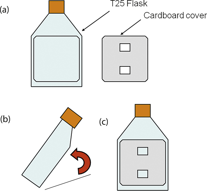 <t>T25</t> cardboard cover design for AF calculation method. (a) Shows the cardboard cover design next to T25 flask. (b) and (c) show how cover is placed onto a T25 flask before photography.