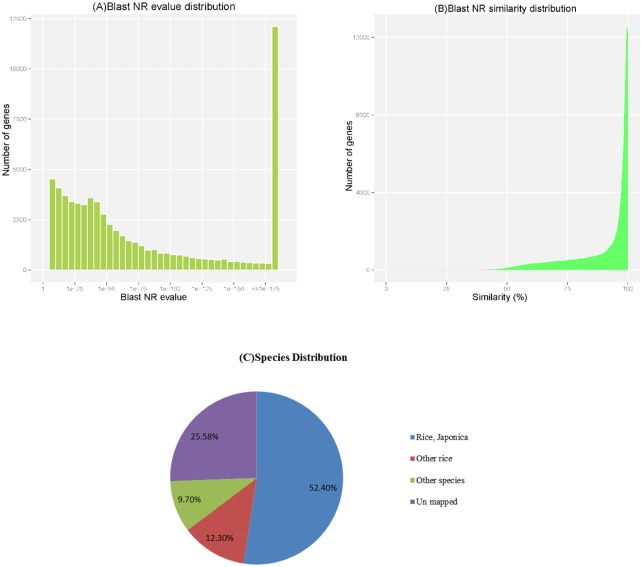 Characteristics of the BLAST matches of the transcriptome unigenes. (A) E-value and (B) Similarity distribution of the top BLAST hits for each unigene in the NR database, with a cut-off E-value of 1.0E-5. (C) Species distribution of the BLAST hits for each unigene in the NT database.