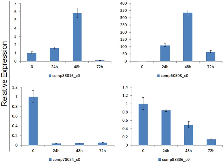 Expression characters of four selected unigenes in the roots of PEG-treated plants at 0 h, 24 h, 48 h and 72 h. The relative expression value was calculated using the 2 -ΔΔCt method and 0 h as a control sample.