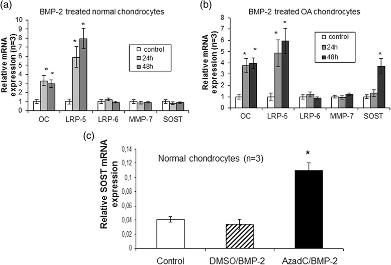 Effect of bone morphogenic protein 2 ( BMP - 2 ) and 5-AzadC treatment on SOST expression. a and b Efects of BMP-2 on SOST mRNA expression levels in cultured normal (n = 3) and osteoarthritis ( OA ) chondrocytes (n = 3). Osteocalcin and LRP-5 used as positive controls that upregulated by BMP-2 and LRP-6 and MMP-7 used as negative controls that not regulated by BMP-2( error bars = standard error, * p = 0.004). c Detection of SOST mRNA expression levels by real time PCR after BMP-2 treatment in cultured normal chondrocytes (n = 3) with or without 5-AzadC. GAPDH was used for normalization of the real-time PCR data ( error bars = standard error, * p = 0.001 versus control and DMSO/BMP-2 treatment). MMP matrix metalloproteinase, LRP low-density lipoprotein receptor-related protein