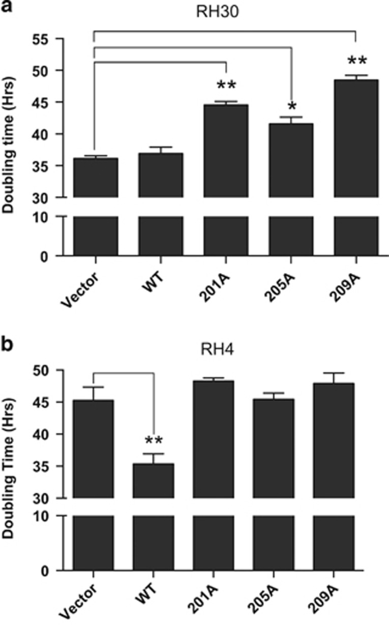 Effect of inhibiting PAX3-FOXO1 phosphorylation on ARMS tumor cell proliferation. ( a ) RH30 or ( b ) RH4 ARMS tumor were cells stably transduced with empty vector (vector), wild-type PAX3-FOXO1 (WT) or the indicated PAX3-FOXO1 phosphomutants, as described in the Materials and Methods. Cells were plated and allowed to grow for up to seven days. On each day the cell density was determined using the CCK-8 cell counting kit, densities were graphed as a function of time, and doubling times were determined using GraphPad Prism 6 software. Error bars represent the standard deviation from three independent determinations and P -values were computed using non-parametric two-way analyses of variance comparing each treatment condition to results seen with the empty vector transduced negative control. (* P =0.01, ** P =0.003).