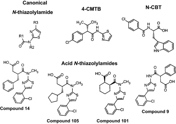 Structures of N -thiazolylamide and synthetic FFA2 ligands used in this study.