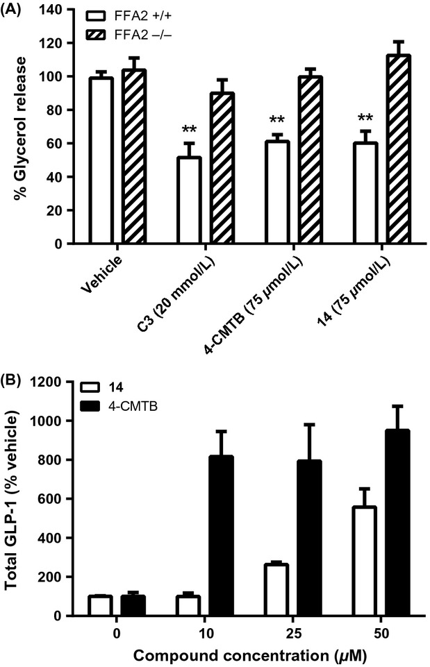 Effects of <t>FFA2</t> agonists on lipolysis and GLP-1 release in mouse cells. (A) Adipose tissue explants from FFA2 −/− mice and matched wild-type littermates were treated in vitro with vehicle, C3 (20 mmol/L), 4-CMTB, or 14 (75 μ mol/L) and lipolysis determined by measurement of glycerol release. Data represent mean ± SEM ( n = 6–11 across two experiment occasions; **P