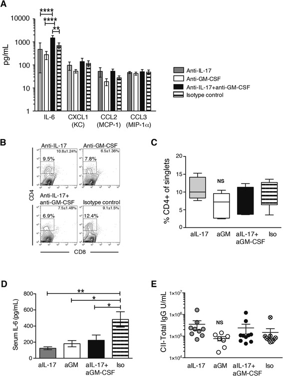 Cytokines in synovial washouts and serum and flow cytometric analysis of synovium and serum immunoglobulin G (IgG) after 14 days of interleukin (IL)-17 and granulocyte macrophage colony-stimulating factor (GM-CSF) blockade. a Luminex analysis of cytokines and chemokines in joint washouts ( n = 6 mice per group). b Flow cytometric analysis of phorbol 12-myristate 13-acetate/ionomycin-stimulated synovial tissue stained with monoclonal antibodies for CD4 and CD8 after 14 days of treatment. The gate depicts the percentage of CD4 + cells of single synoviocytes. Plots shown are representative of n = 6 joints/group. Mean ± standard error of the mean (SEM) for each group is given in the fluorescence-activated cell sorting plot. c Summary graph for the flow cytometric analysis of synovial tissue. Box depicts 25th to 75th percentiles. Line depicts median. Whiskers depict minimal to maximal values. n = 6 mice per group. d IL-6 levels in serum measured by Luminex assay. n = 10 mice/group. Mean ± SEM. e Total collagen-specific immunoglobulin G (IgG) in serum. n = 7–10 mice/group. * p