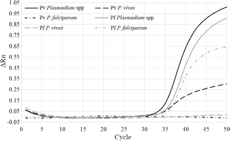 : real-time polymerase chain reaction (PCR) amplification plot of a triplex Plasmodium spp assay. The two quantitative PCR positive controls are shown: Plasmodium vivax infected Anopheles darlingi (black lines) (solid line: Plasmodium spp positive; dashed line: P. vivax species positive; dashed/dotted line: Plasmodium falciparum negative) and P. falciparum infected Anopheles stephensi (grey lines) (solid line: Plasmodium spp positive; dashed line: P. vivax negative; dashed/dotted line: P . falciparum positive). ΔRn: baseline corrected normalised fluorescence.