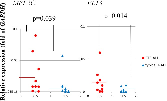 Expression levels of MEF2C and FLT3 in ETP-ALL vs. typical T-ALL blast cells. Comparison of the expression levels of MEF2C and FLT3 in ETP-ALL vs. typical T-ALL blast cells determined by real-time quantitative-PCR analysis.