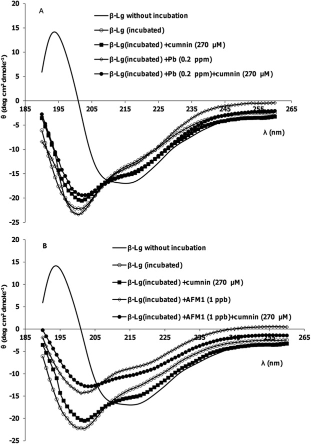 Representative far-UV CD spectra of β-Lg samples after incubation at pH 2 and 80°C. (A) In the absence and presence of Pb 2+ , curcumin and their mixture. (B) In the absence and presence of AFM1, curcumin and their mixture.