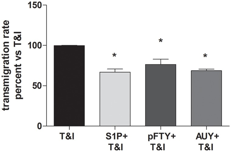 S1P modulation reduces transmigration of PBMCs across an in vitro BBB model under shear stress. When hBMVEC/hAST co-culture was exposed to T I in the presence of S1P (50 nM), pFTY (50 nM), or AUY (50 nM), the ability of PBMCs to migrate through the barrier is reduced if compared to the condition in which the barrier is exposed only to cytokines. Data are mean of 2 independent experiments and are expressed as percent reduction in PBMC migration after 1 hour compared to T I. *p