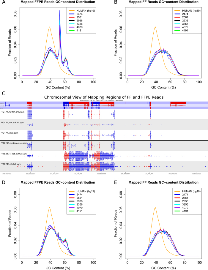 GC content distribution before and after applying filter on FF and FFPE samples. The GC-content distribution indicates abnormal GC peak (blue line) in FFPE (A) but not in FF (B) samples. The GC content of the human reference genome is plotted in red line. To understand why GC content in FFPE sample show an abnormal peak, mapped reads were visualized by SeqMonk. The representative chromosome view shows three rows of data tracks for each sample: (1) mRNA.only contains only reads in mRNA regions, (2) not.mRNA contains all reads that did not align to exons, (3) total contains all reads. Strand information is shown in red and blue. FFPE RNA sequencing produces reads that also map to intronic regions. When reads mapping to intronic regions in both FF and FFPE were filtered out, abnormal GC peak in FFPE samples were removed (D) without affecting the GC-content distribution of FF samples (E).