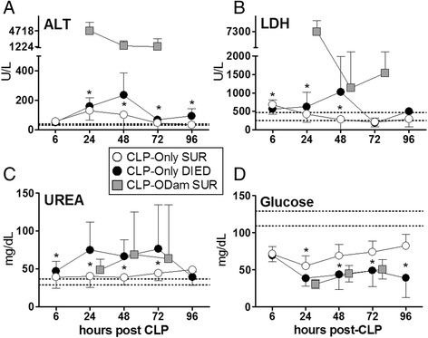 Retrospective comparison of organ function between dying and surviving septic mice using CLP as reference point. Plasma levels of (A) <t>ALT</t> (B) <t>LDH</t> (C) urea and (D) glucose in mice that died (CLP-Only DIED) or survived (CLP-Only SUR) post-CLP were compared to surviving CLP-ODam mice (CLP-ODam SUR). For (A) to (D) in CLP-Only: at 6 h, DIED n = 45 and SUR n ≥ 36; at 24 h, DIED n = 37 and SUR n = 38; at 48 h, DIED n = 13 and SUR n ≥ 37; at 72 h, DIED n = 7 and SUR n ≥ 34; at 96 h, DIED n = 3, SUR n = 36. In CLP-ODam SUR n = 3 at all measured time points (24, 48, 72 h); * p