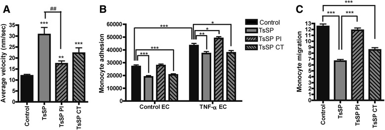 TsSP-induced functional effects on monocytes are glycan-dependent. Primary human monocytes were treated with TsSP, periodate (PI)- or chymotrypsin (CT)-treated TsSP (all 40 μg/ml) after which the cell motility was instantly visualized by ( a ) live cell imaging (10 h) and subsequently quantified by using Image J. Monocytes that were incubated with TsSP or PI/CT-TsSP for 16 h were used to study ( b ) monocyte adhesion to brain endothelial cells as well as ( c ) monocyte transendothelial migration as studied by time-lapse video microscopy. These experiments were performed on control ( b ) or TNF-α-treated endothelial cells ( b and c ). Experiments were performed in triplicate using cells from 8 ( a ) or 5 ( b and c ) different human donors and the results are presented as the mean +/− SEM. * p